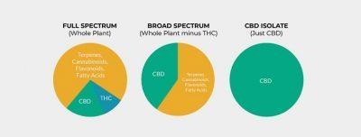 sunmed broad spectrum cbd oil tincture - full spectrum cbd oil tincture